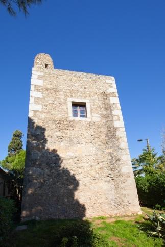 Medronheira (2)