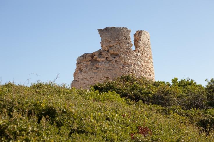 Torre da Lapa (1)