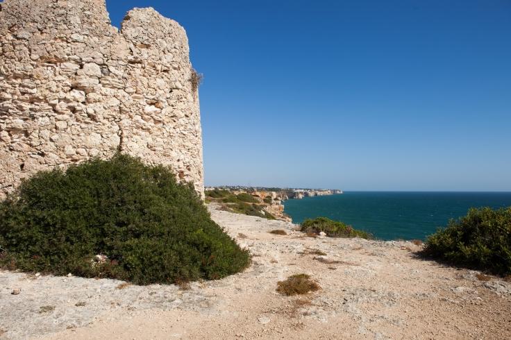 Torre da Lapa (3)