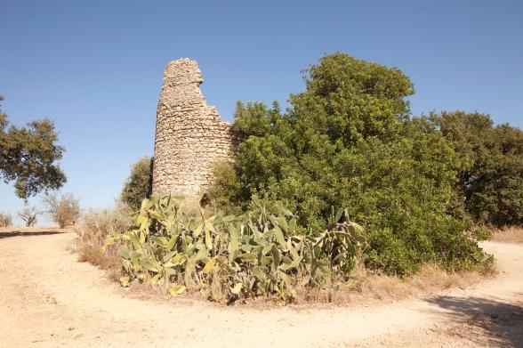 Torre de Bias-3