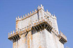 Torre Homenaje (4) (P)