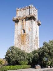 Torre Homenaje (6)