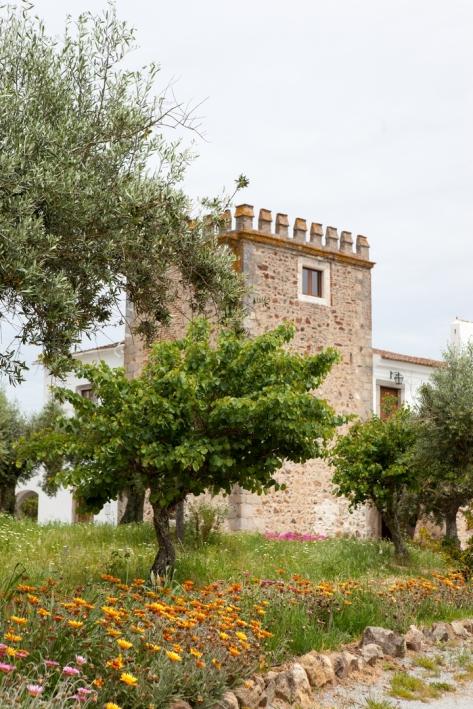 Torre Quinta D. Francisco