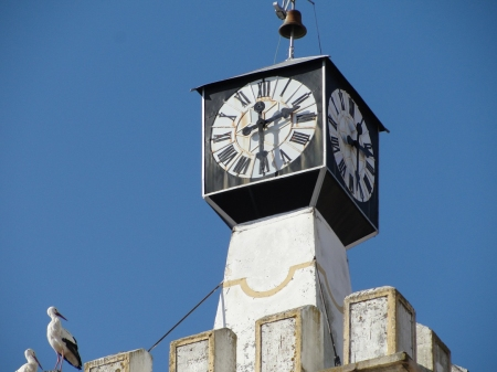Torre relogio Nisa-2