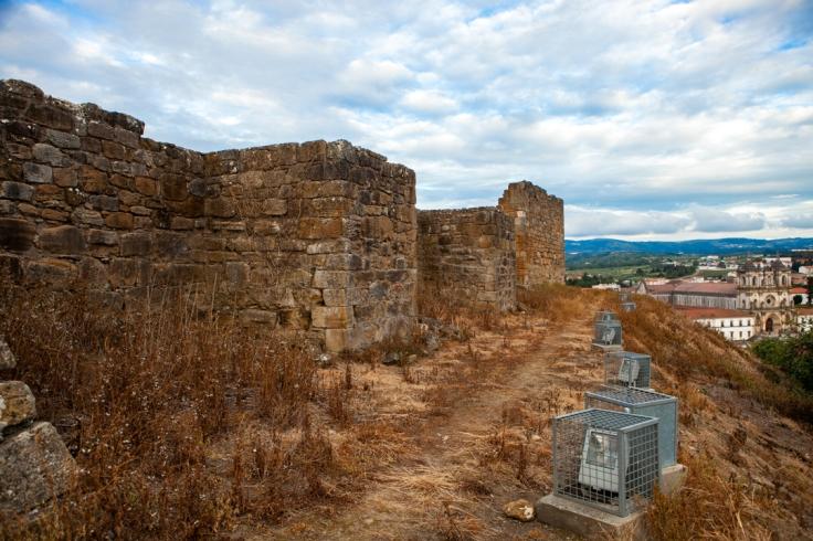 Castelo Alcobaça-3