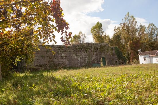 Torre Vasconcelos-2