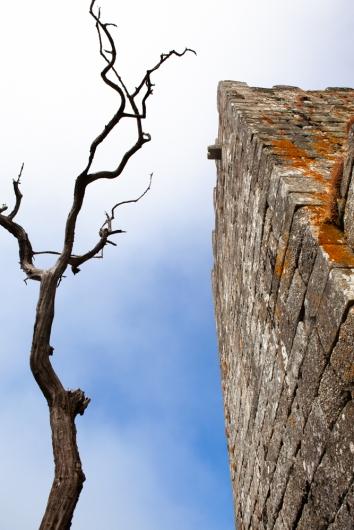 Castelo de Arnóia-10