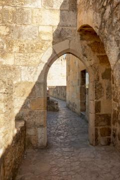 Castelo Sao Jorge-28
