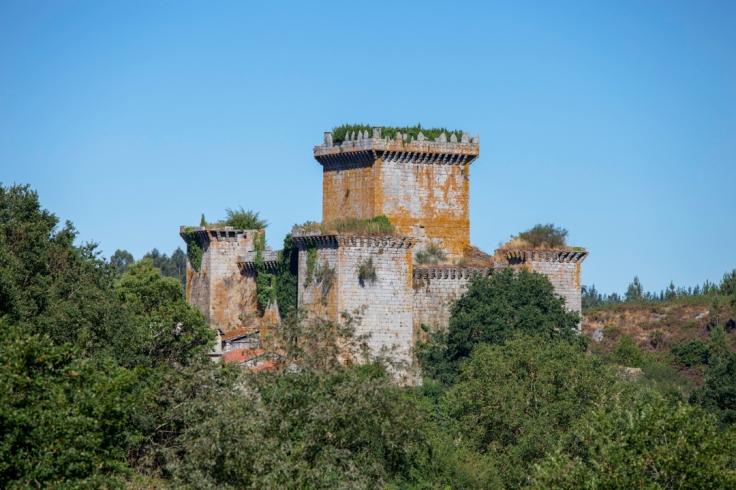 Castelo de Pambre-1